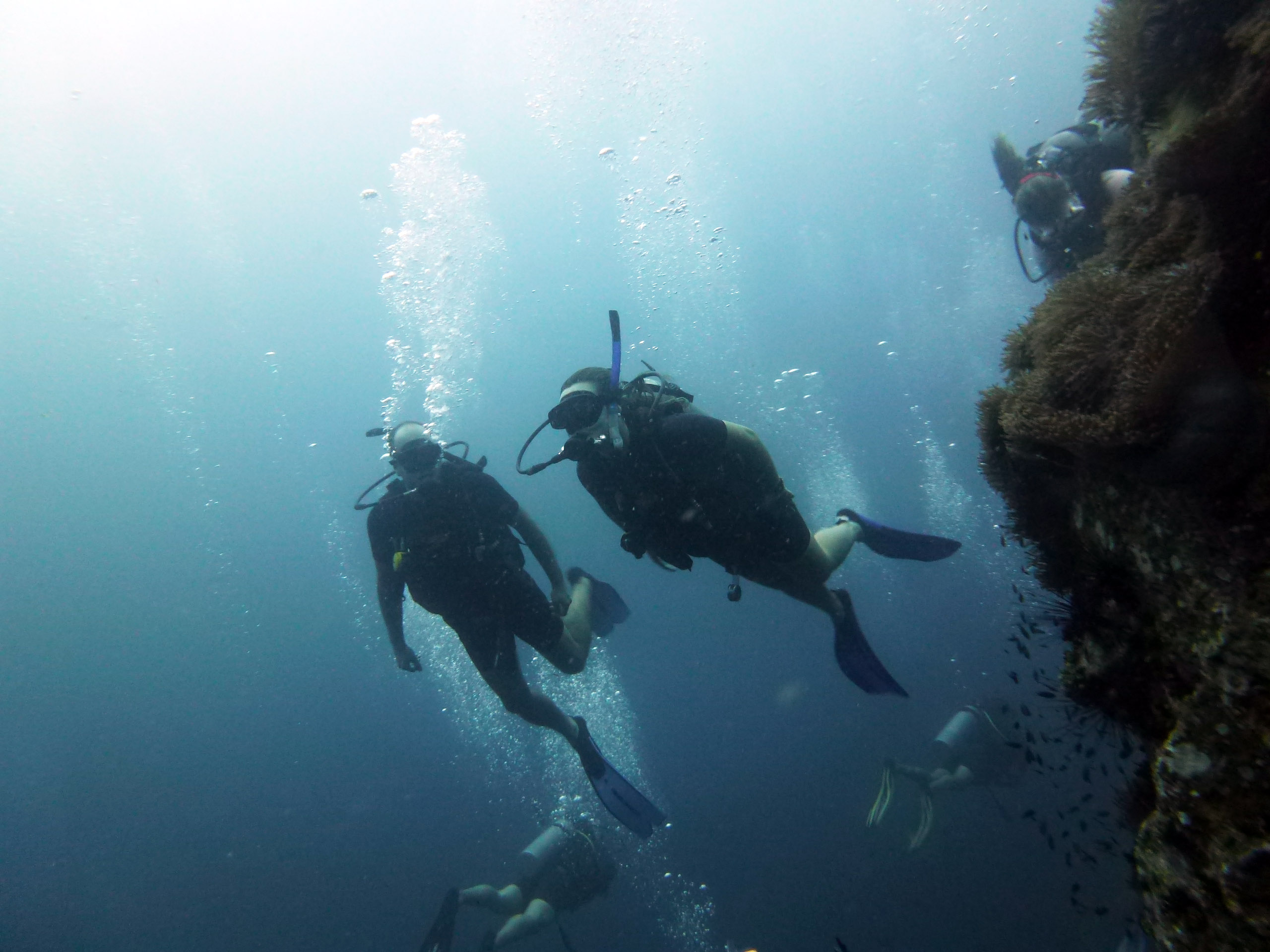 Em um dos mergulhos em Koh Tao, Tailândia