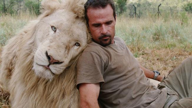 O Encantador de Leões: um dos vídeos mais emocionantes já produzidos dedicado aos amantes dos animais e da vida selvagem