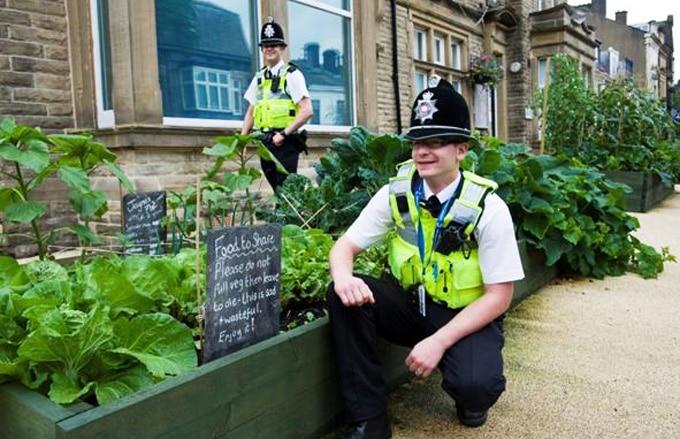 Pequena cidade na Inglaterra é modelo de autossuficiência alimentar