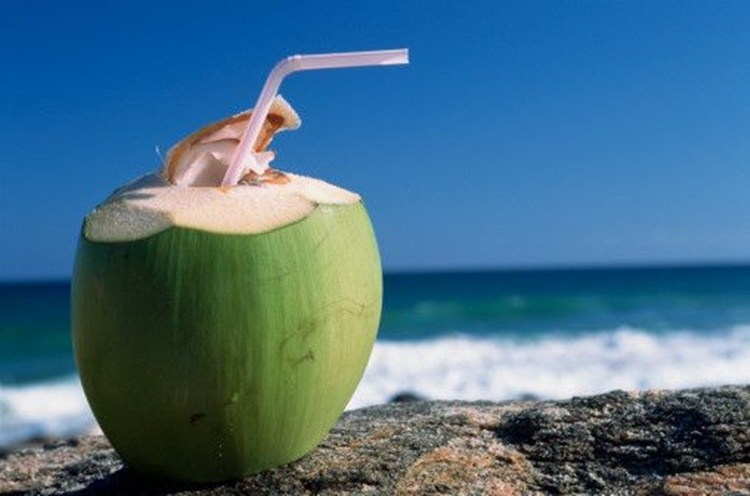 Você sabe o que acontece com seu corpo ao beber água de coco?
