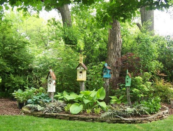 Aprenda a usar a natureza como aliada para diminuir a carga de trabalho na horta