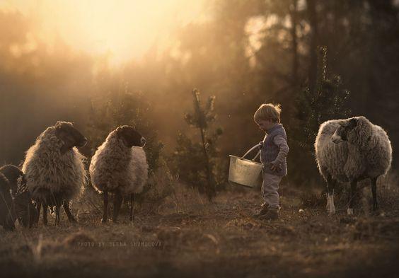As fotografias encantadoras de Elena Shumilova