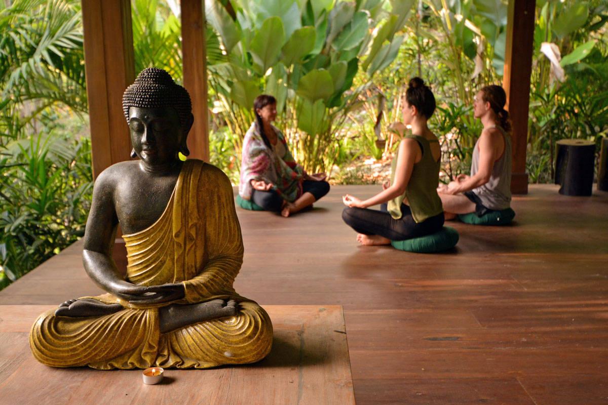 Quero Ser Zen! – 7 Passos para uma Vida mais Equilibrada