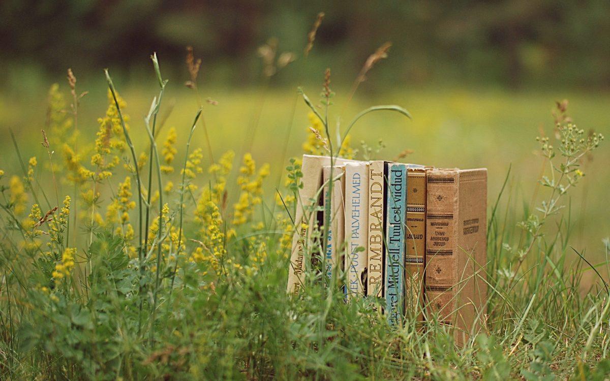 10 Livros para te inspirar a mudar de  vida