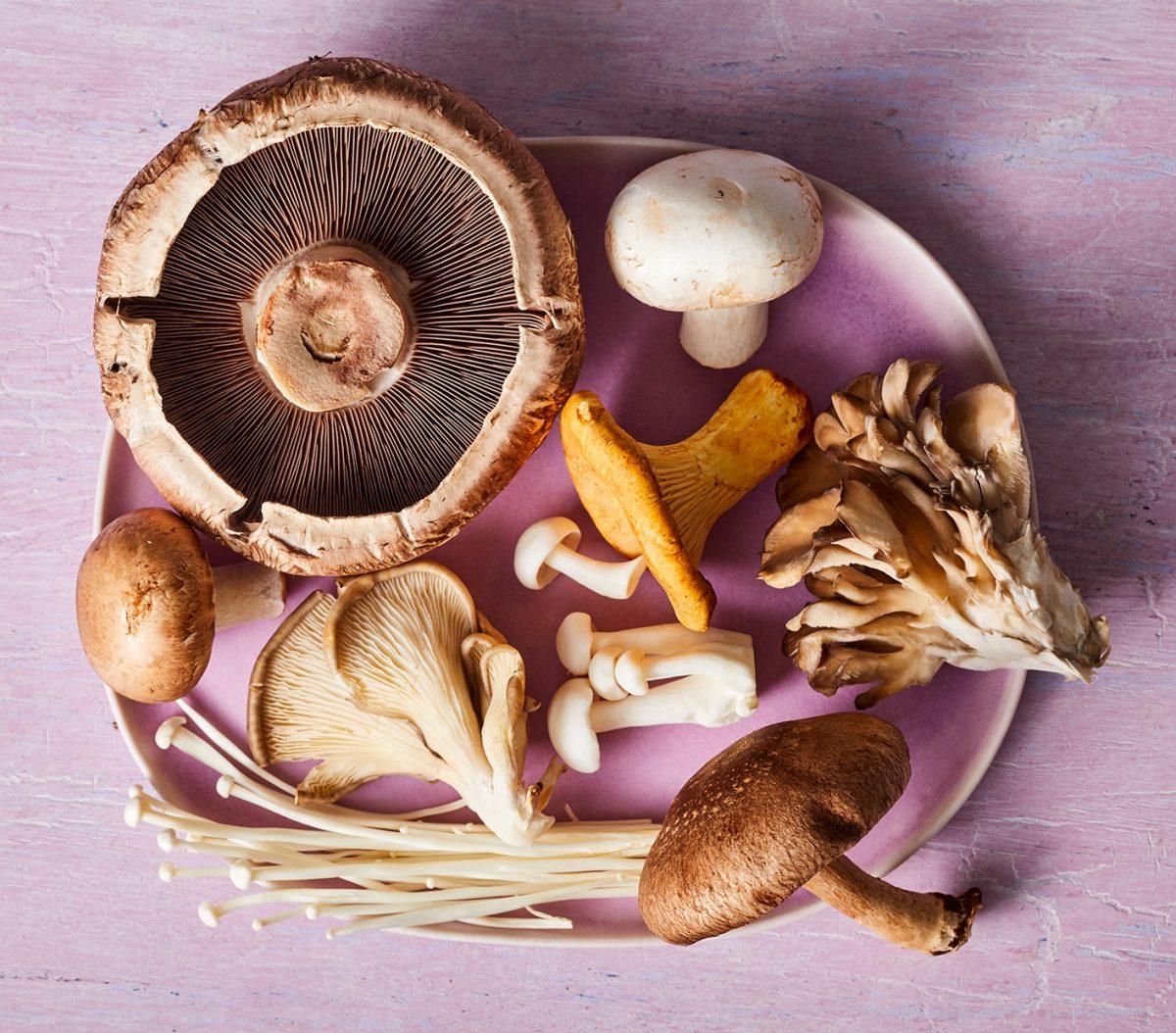 cogumelos receita