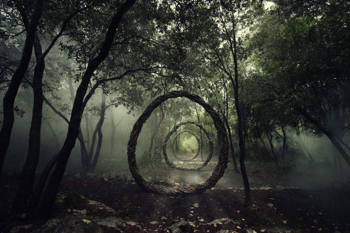 Uma galeria de arte em meio à floresta