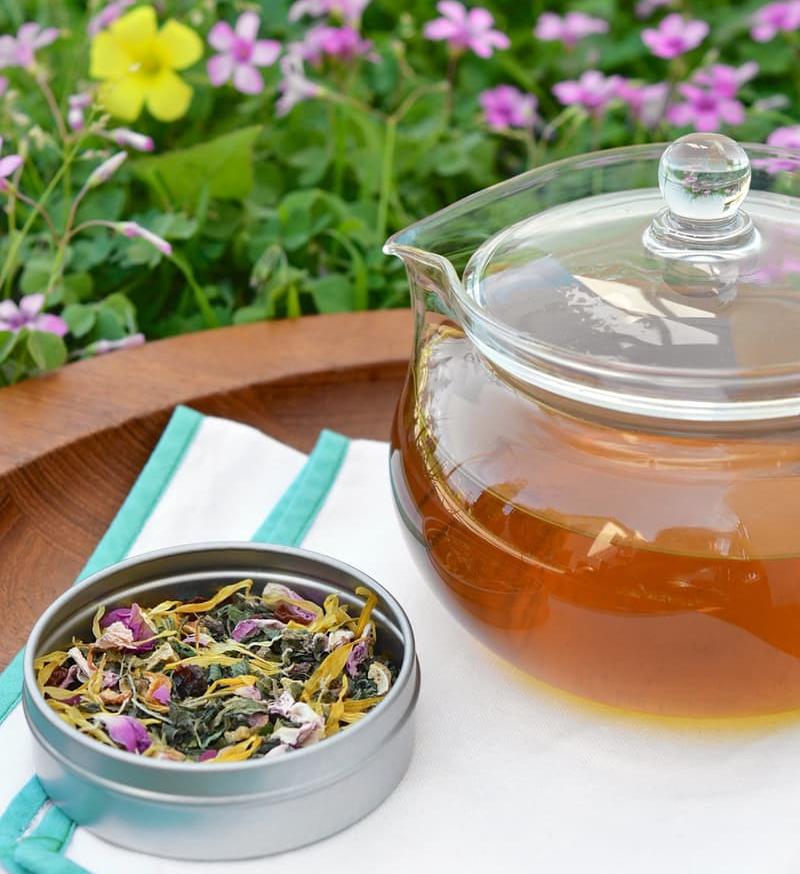 Desperte-se para a Primavera com este Chá de Urtiga