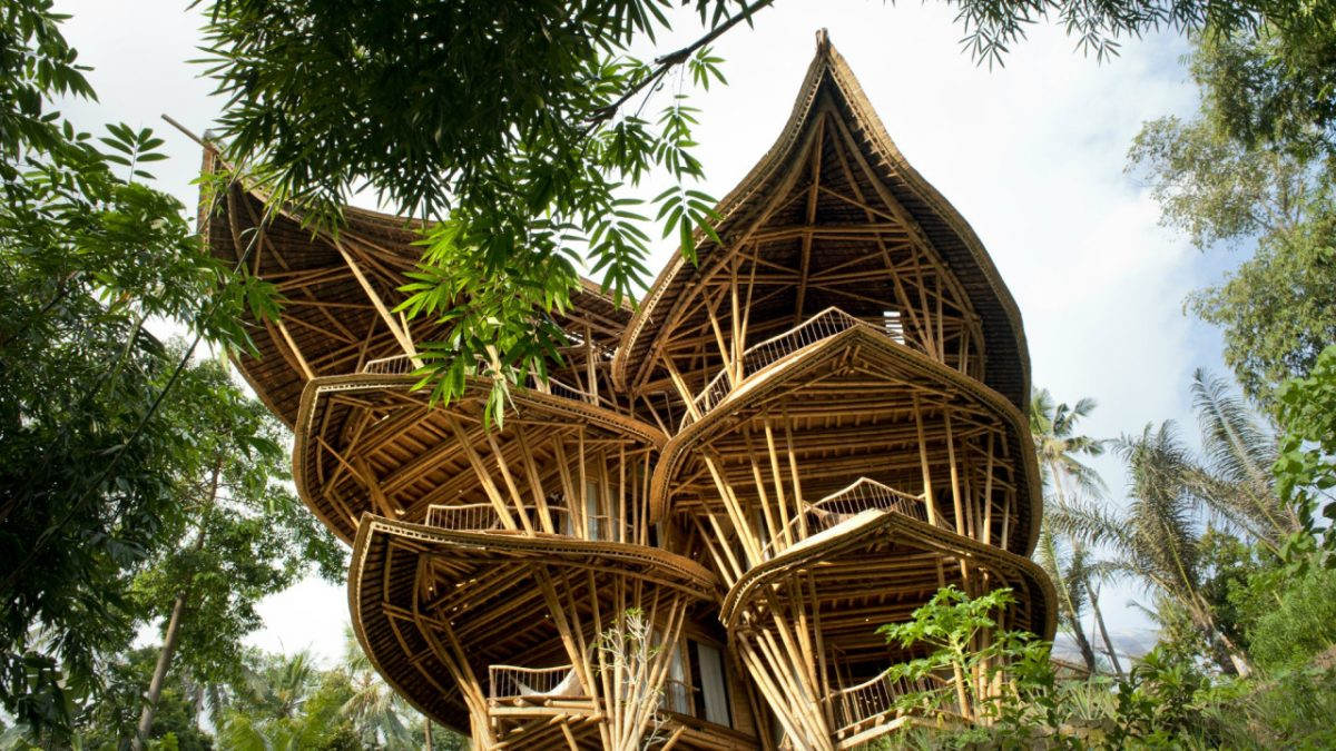 Construção Natural: O Bambu na Arquitetura