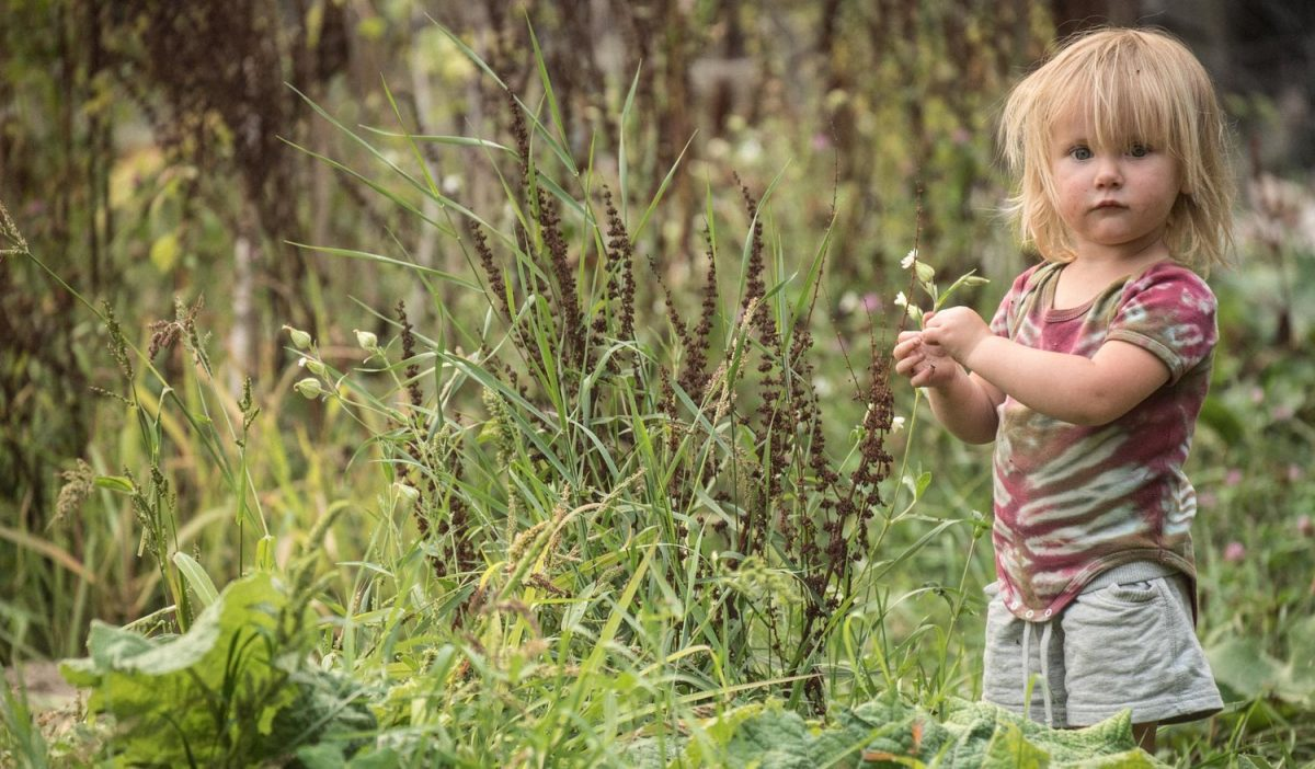 Porque nossas crianças precisam brincar na natureza