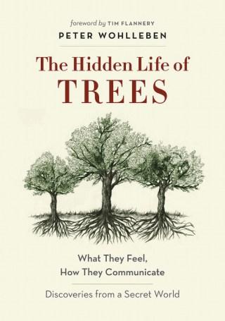 hiddenlifeoftrees