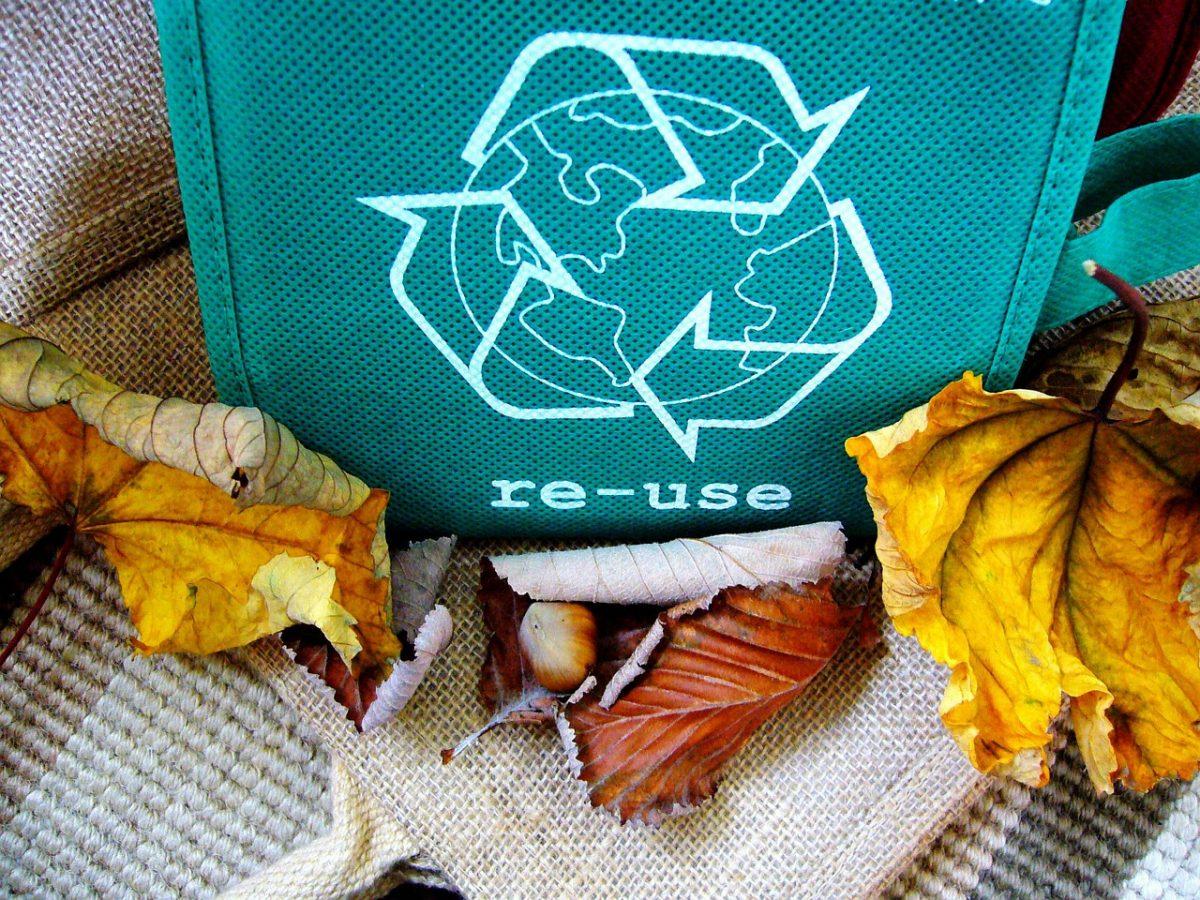 4 dicas para reduzir sua produção de lixo