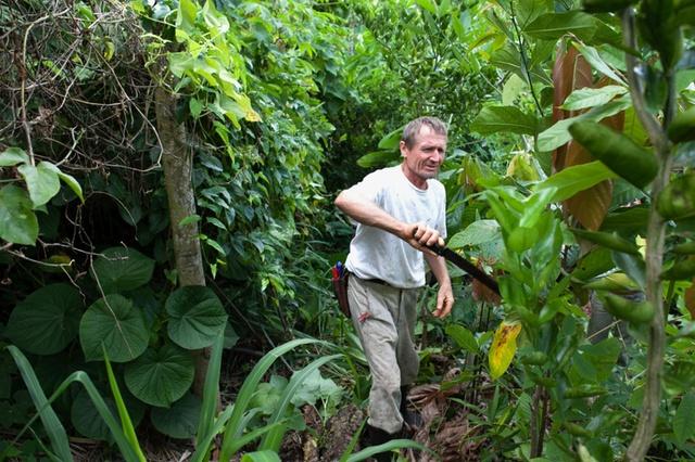 3 documentários com Ernst Götsch – o guru da agrofloresta