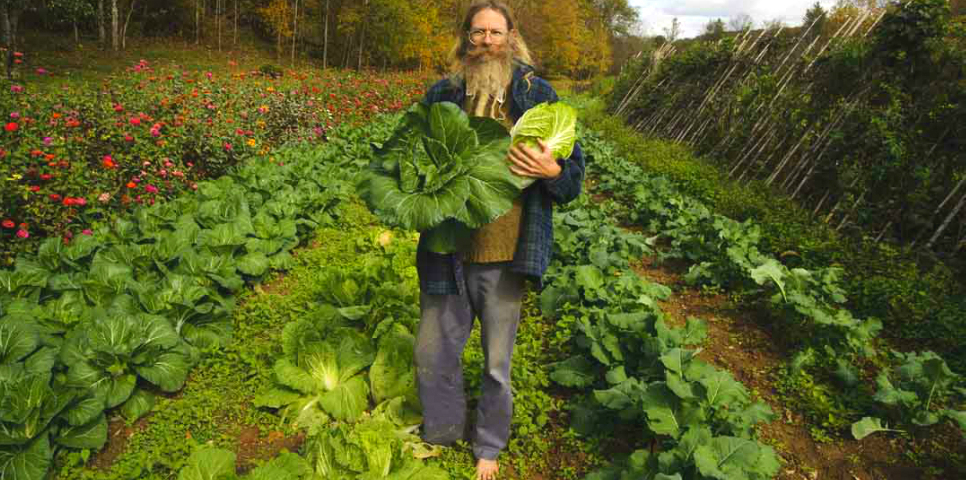 Agricultura Biodinâmica –  a forma holística de plantar