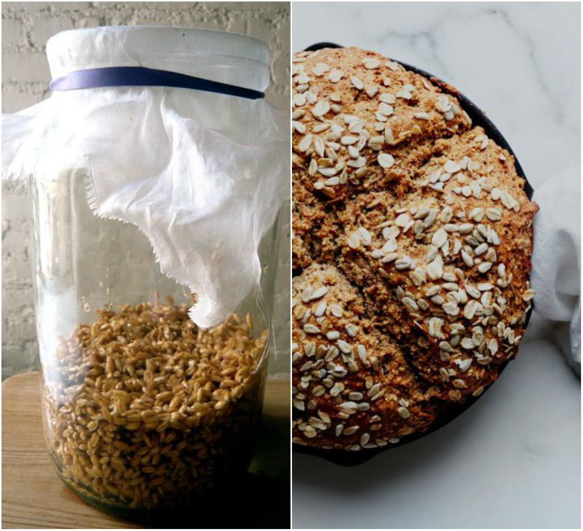 Aprenda como preparar pão de trigo germinado