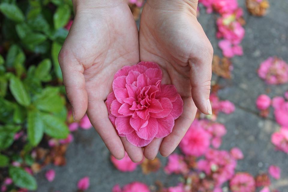 Acupuntura com as mãos: aprenda e faça você mesmo