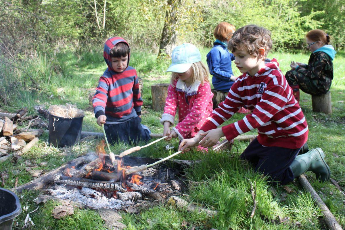 Incorporar a natureza na escola reduz o estresse das crianças e melhora o aprendizado