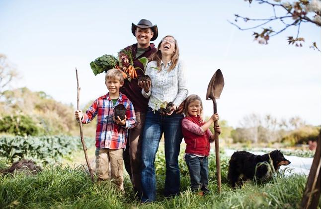 5 pontos a se considerar quando pensar em morar no campo