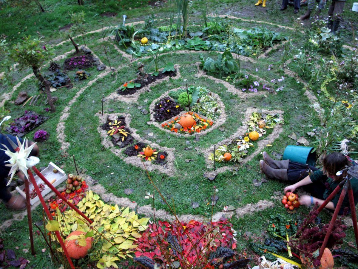 Alimentos e Permacultura: Estudo mostra como viver sem (tanto) supermercado