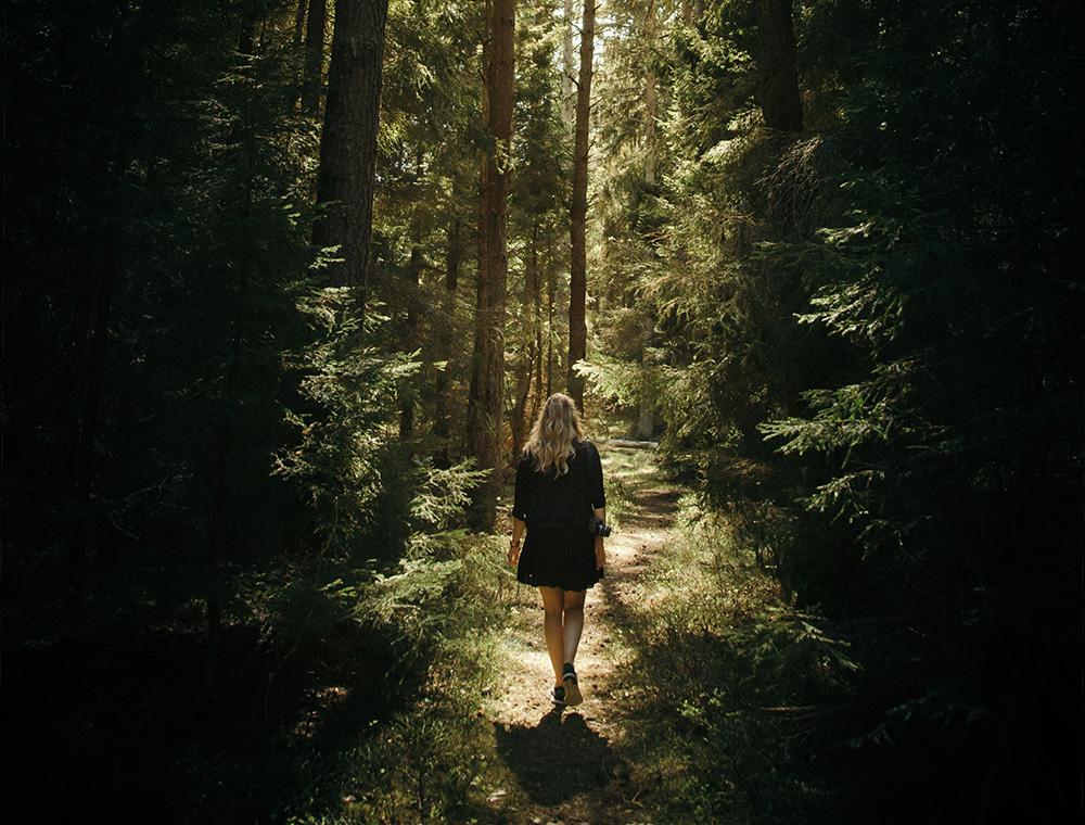 """7 dicas pra se desconectar e aproveitar os benefícios do """"banho de floresta"""""""