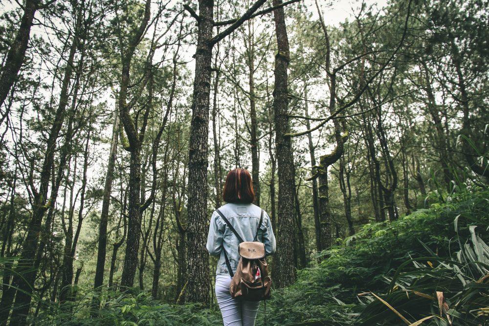 7 terapias que auxiliam no tratamento da depressão