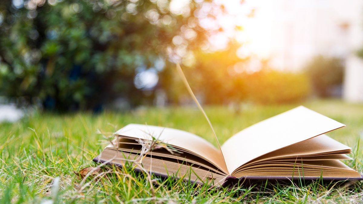 Educação de Alma Brasileira – Uma história sobre a educação no nosso país