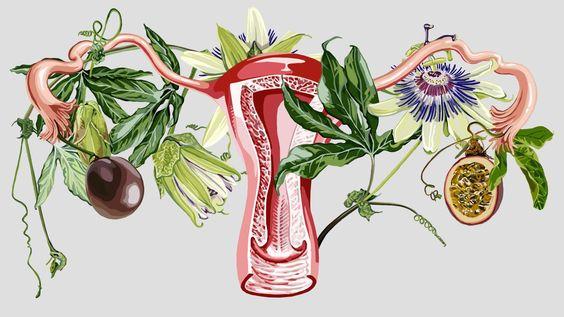 3 Dicas de como gerar menos lixo durante o período menstrual
