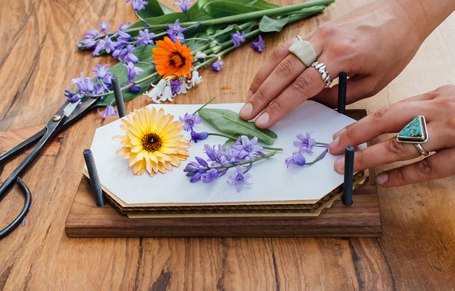 Saiba como desidratar flores em casa para fazer lindos quadros