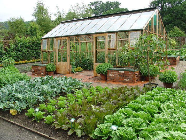 Como construir uma estufa para o cultivo de alimentos