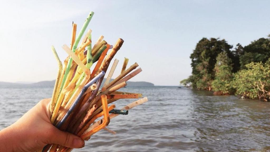 5 razões para você parar de usar canudos plásticos