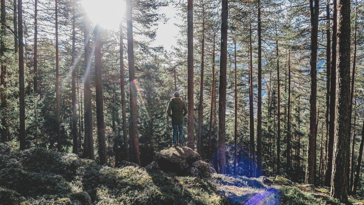 13 hábitos para praticar todos os dias e mudar a sua vida