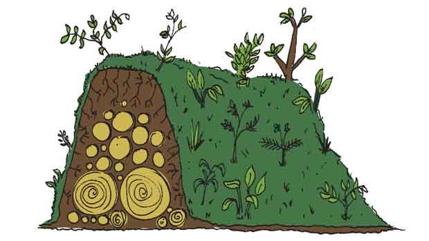 Hugelkultur – cultivo de baixa irrigação e alta fertilização