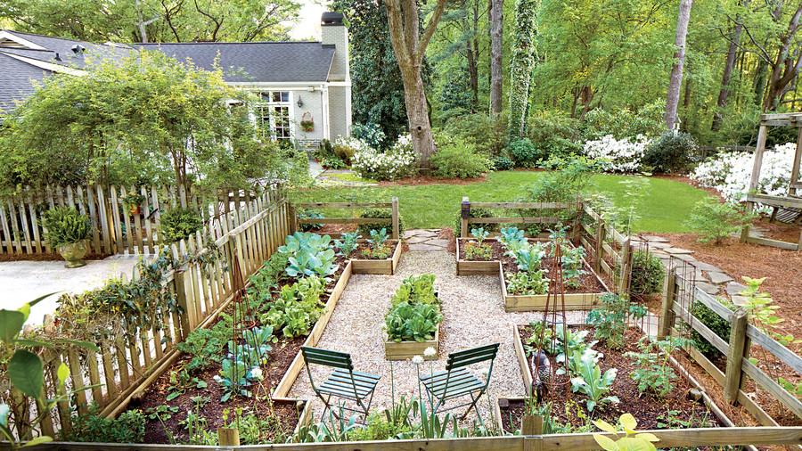 Como transformar seu jardim em uma horta orgânica