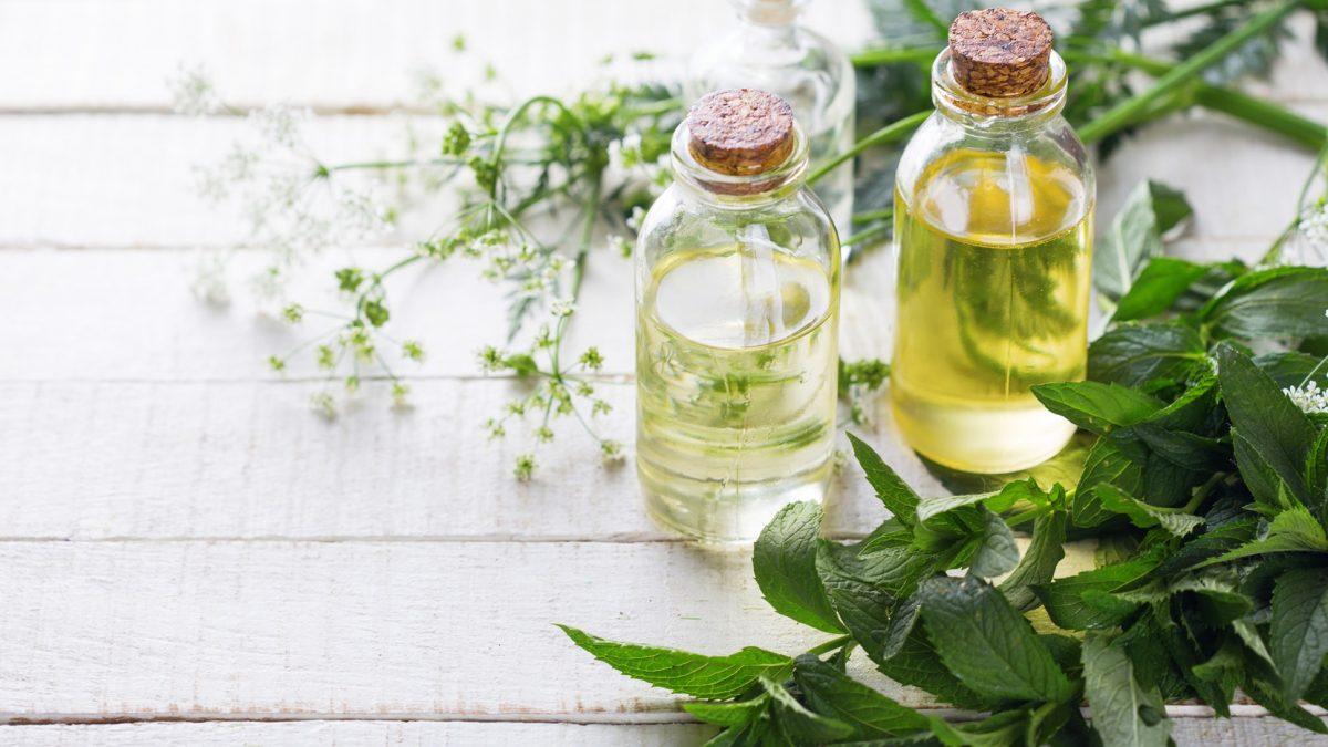 Saiba quais óleos essenciais e vegetais utilizar em pele seca