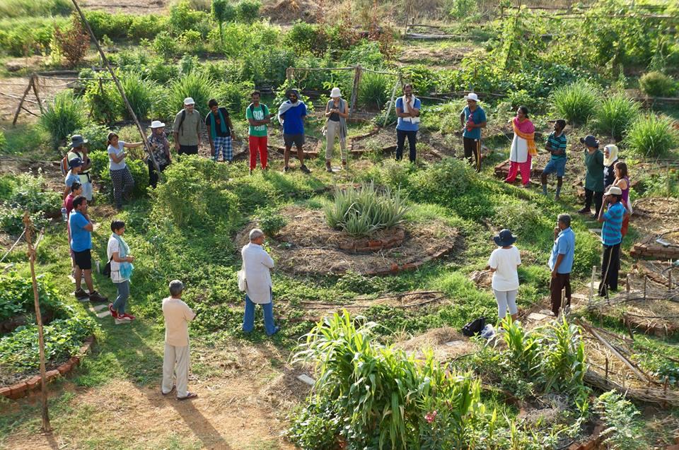 Graças a Permacultura essa vila saiu da precariedade para a autonomia alimentar