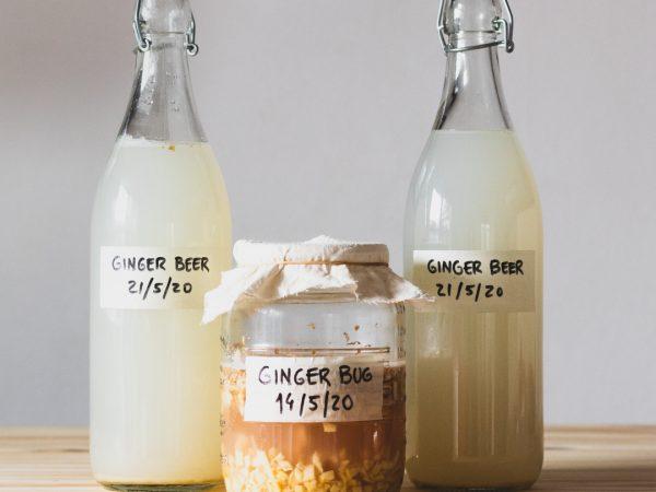 receita ginger beer