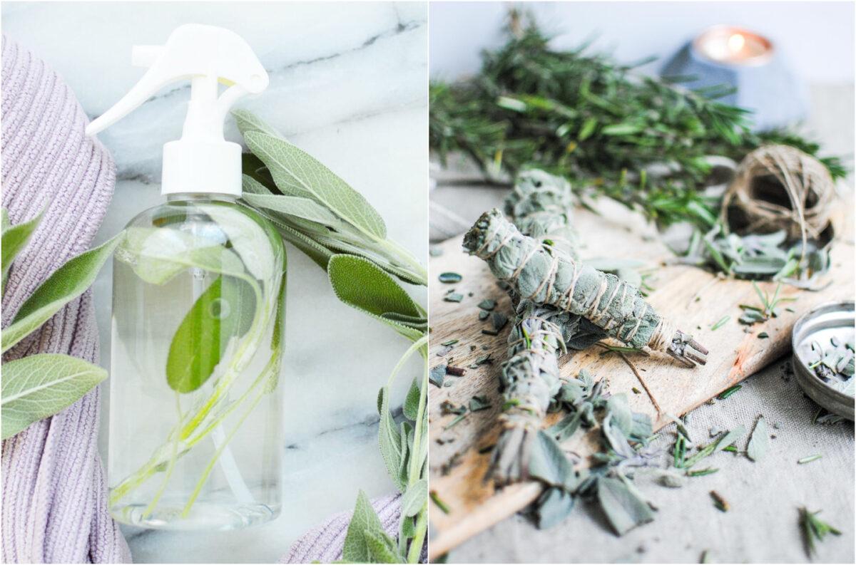 Sálvia – Aprenda como fazer spray e incenso natural
